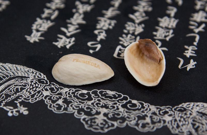 pistachio02